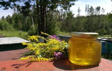 Мёд (урожай 2017 года)