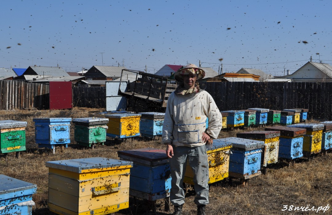 Иркутский пчеловод Черепанов Сергей